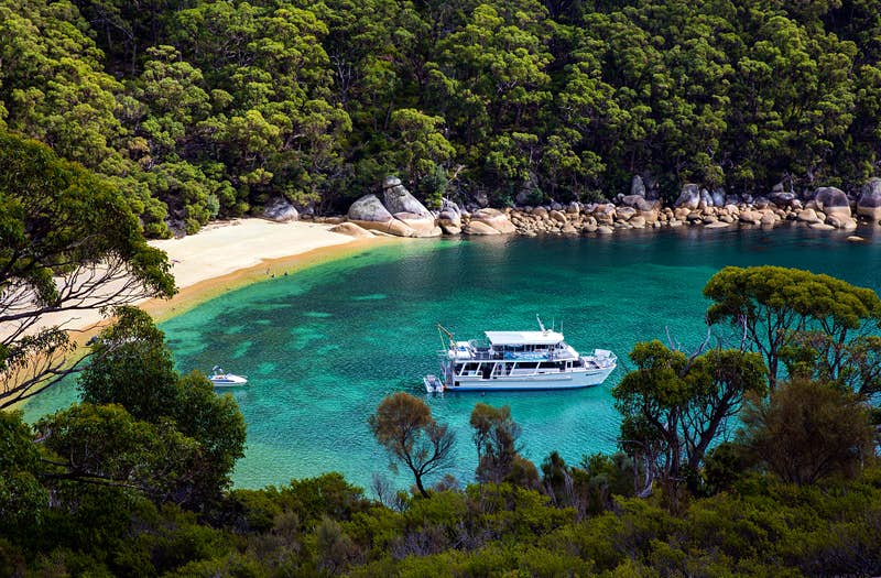An aerial shot of Refuge Cove: a white passenger boat bobs in turquoise water next to a thin strip of white sand that is surrounded by dense forest
