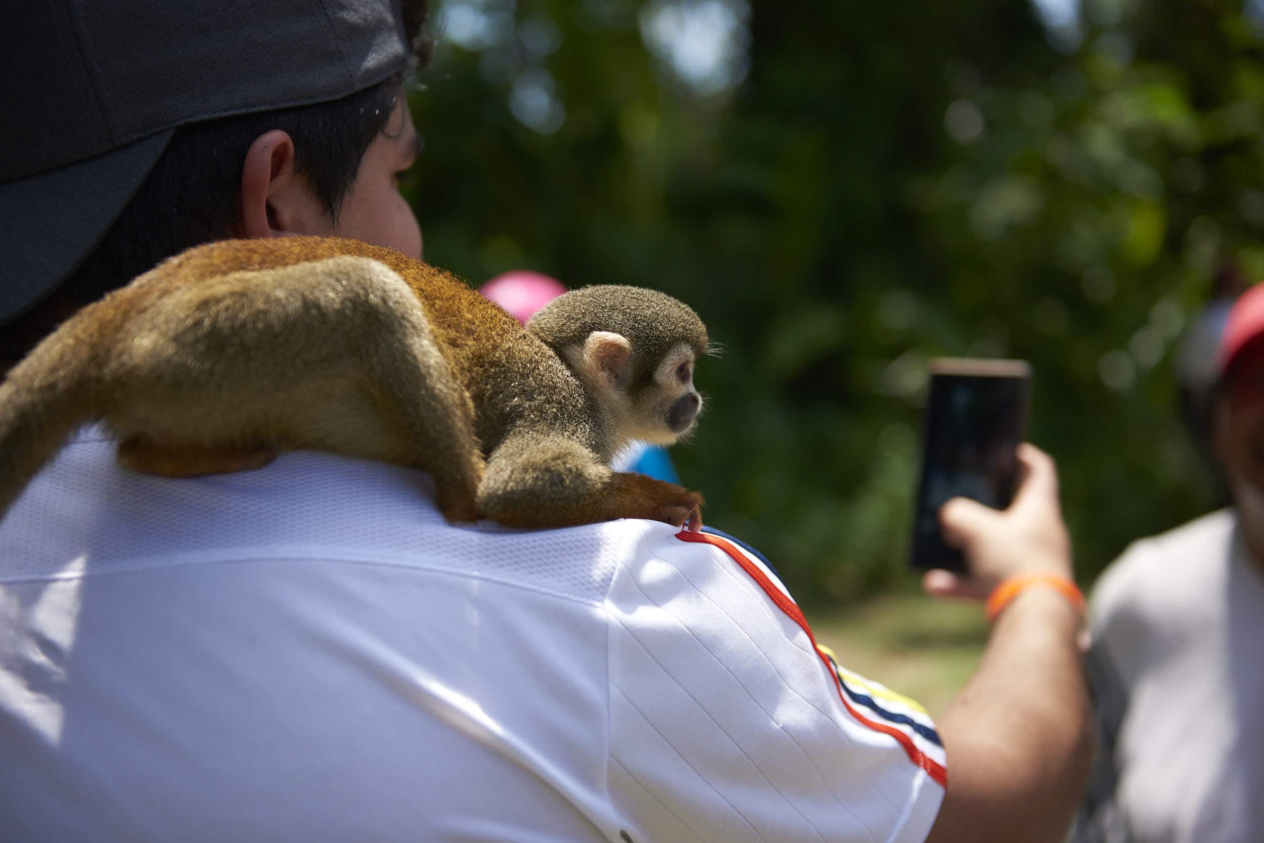 Wildlife selfies are never a good idea. Image by World Animal Protection