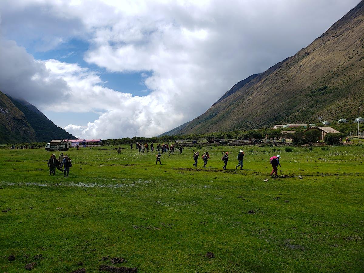 Peru launches massive reforestation programme at Machu Picchu