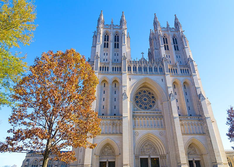 The National Cathedral in Washington DC rises up behind some lovely cherry trees, as its many buttresses, arches and rose window are highlighted; Best American architecture