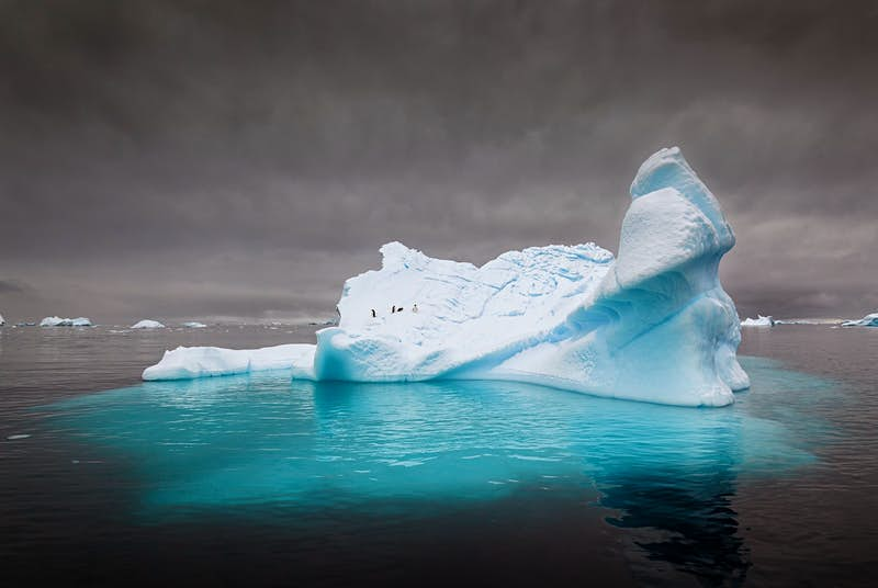 Penguins on an iceberg submerged in dark waters.