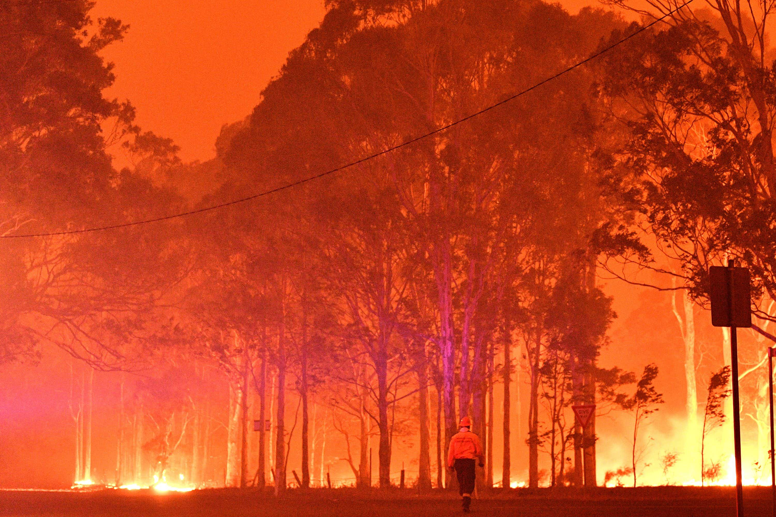 Australian bushfires: what should you do if you have a trip booked?