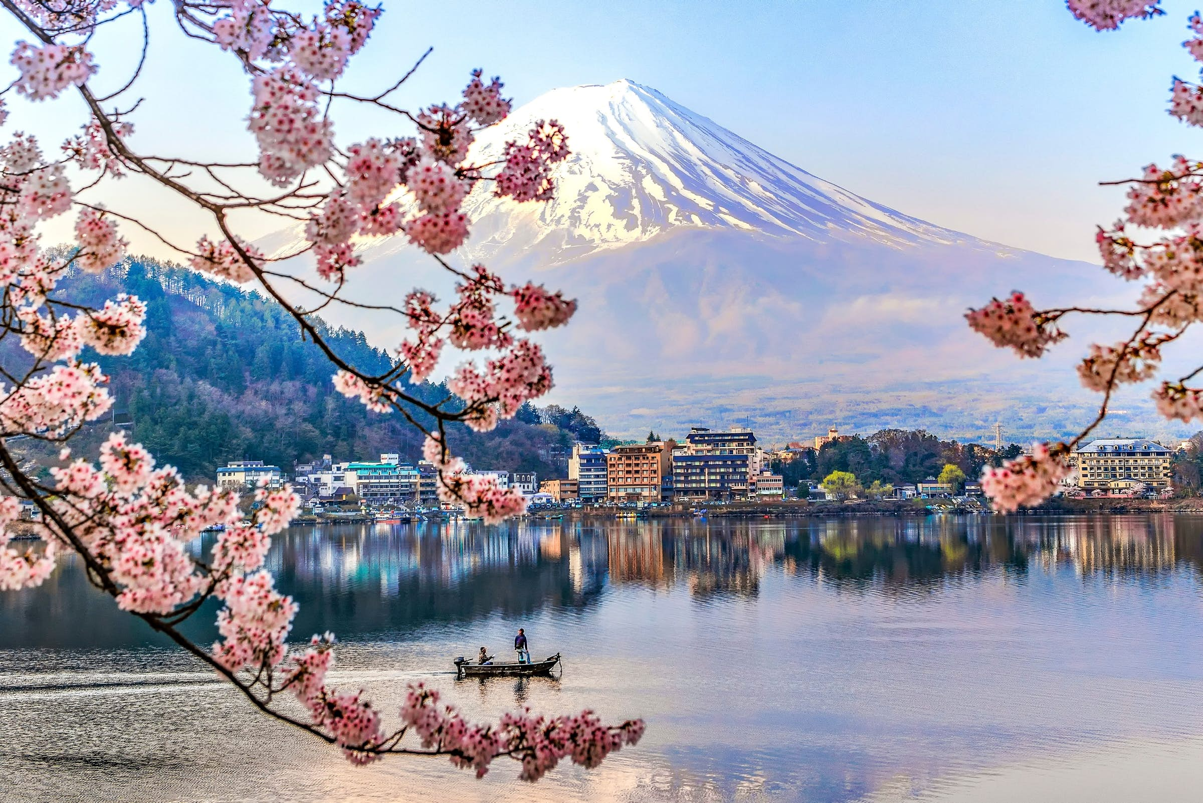 Japan S Famed Cherry Blossoms Are Set To Arrive Early In 2020