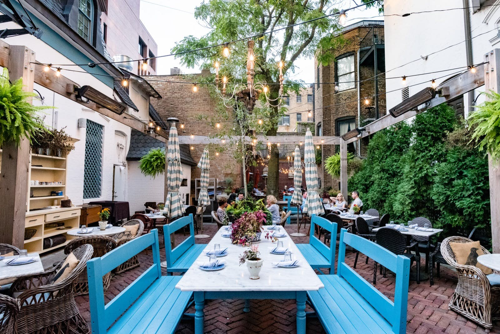Go Green With These Sustainable Experiences In Chicago Lonely Planet