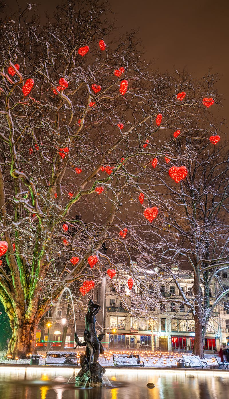 The tree of love filled with red hearts stands at Gusav Adolf's Square in Malmo at christmas time