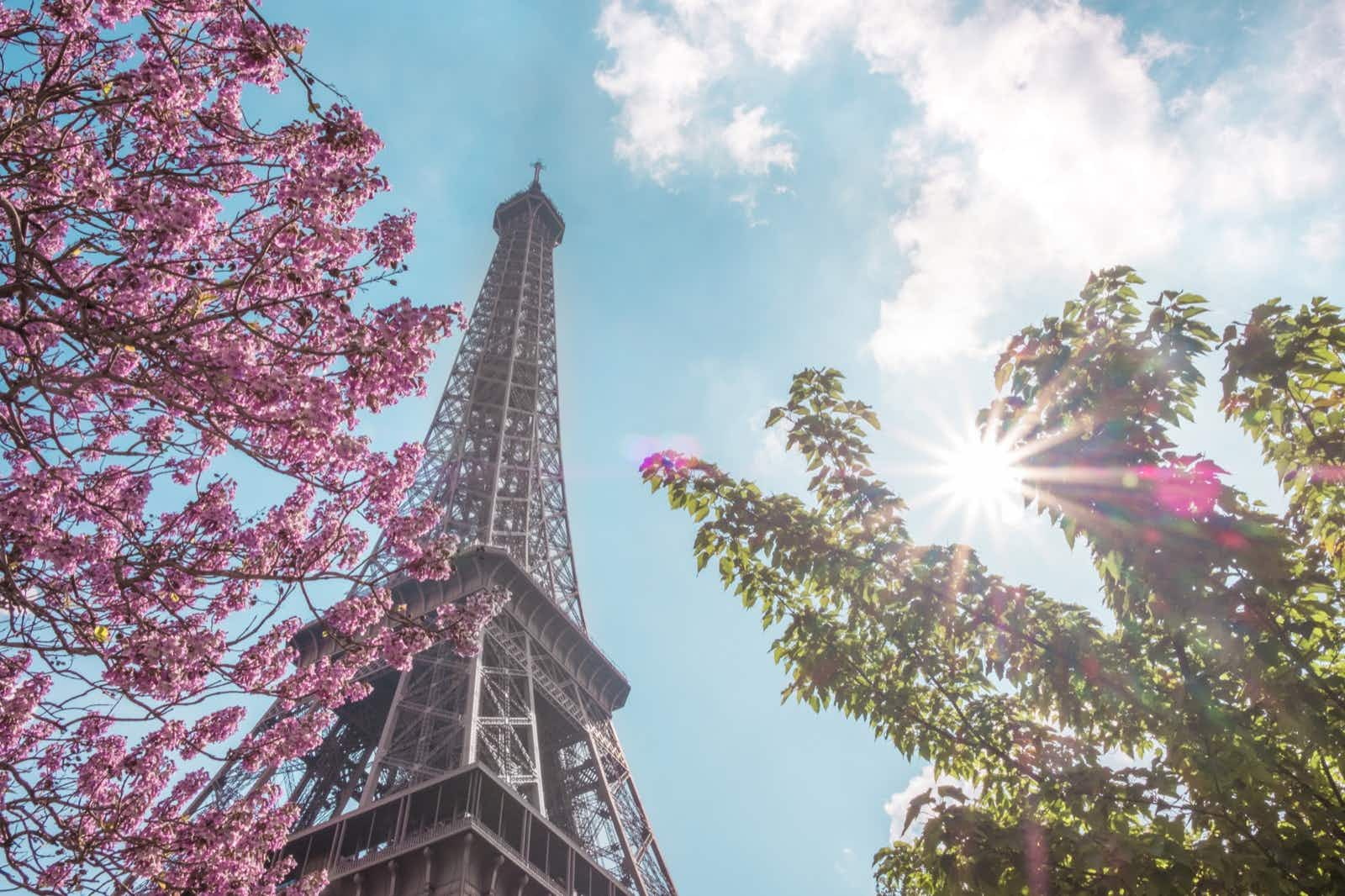 Top 10 things to do in Paris in spring