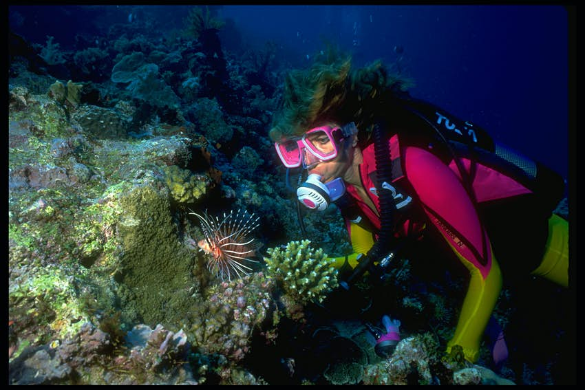 A woman in a neon pink and yellow wetsuit and pink goggles stares at an orange and white lion fish that is swimming alone over a green, grey, and white reef in Kenya