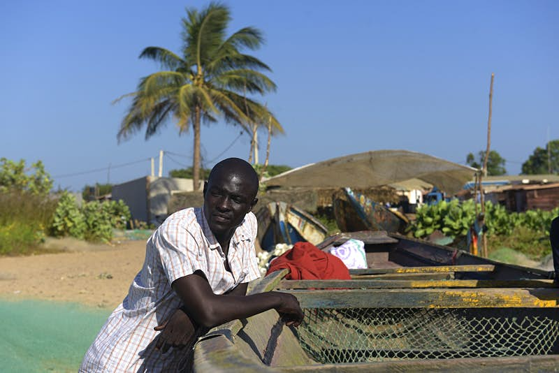 Gambian man poses next to a dugout with other colorful pirogues and a palm tree behind him