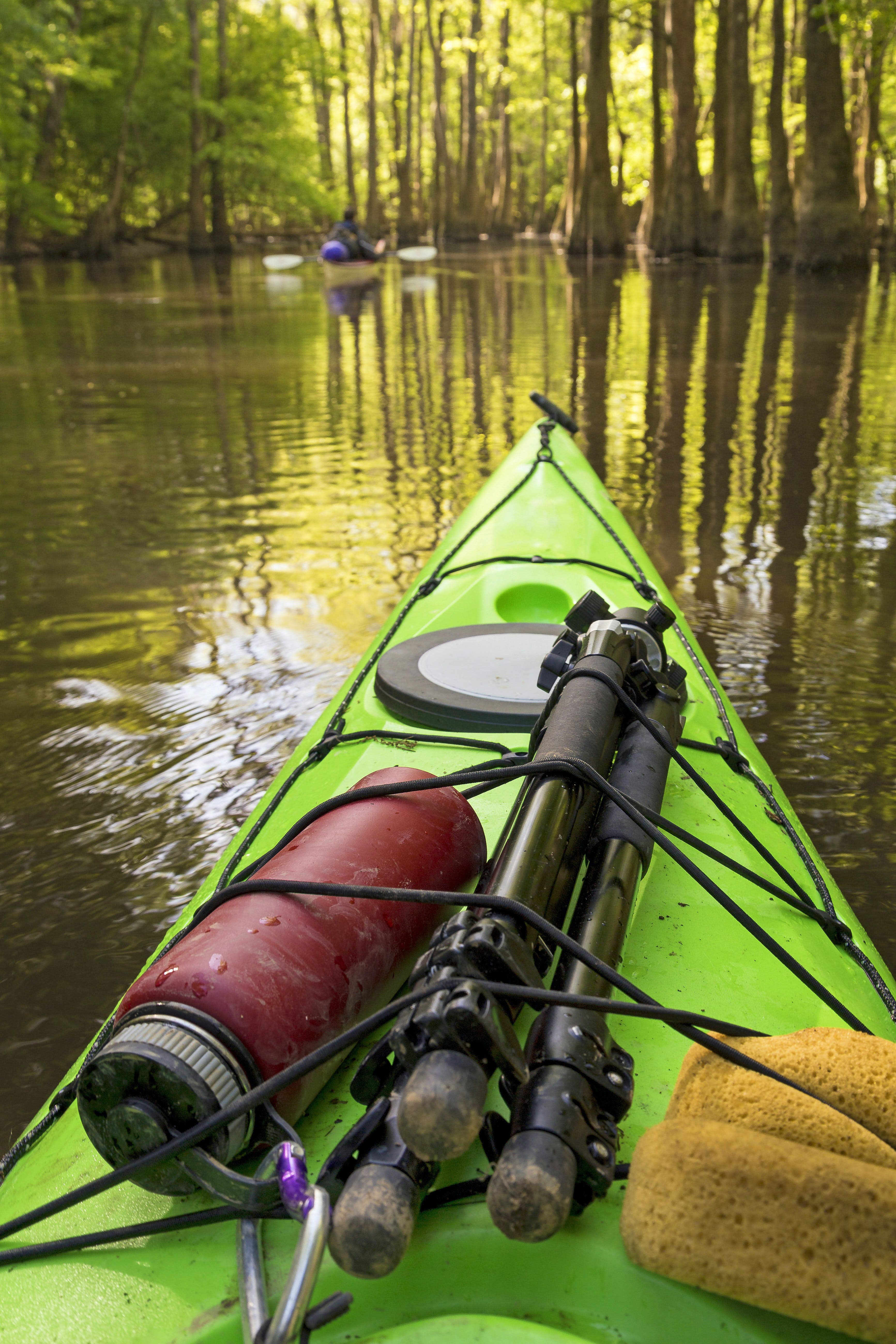 Close-up of a canoe, on which lie a tripod, water bottle and other equipment, which is floating through the cypress groves of South Carolina's Congaree National Park
