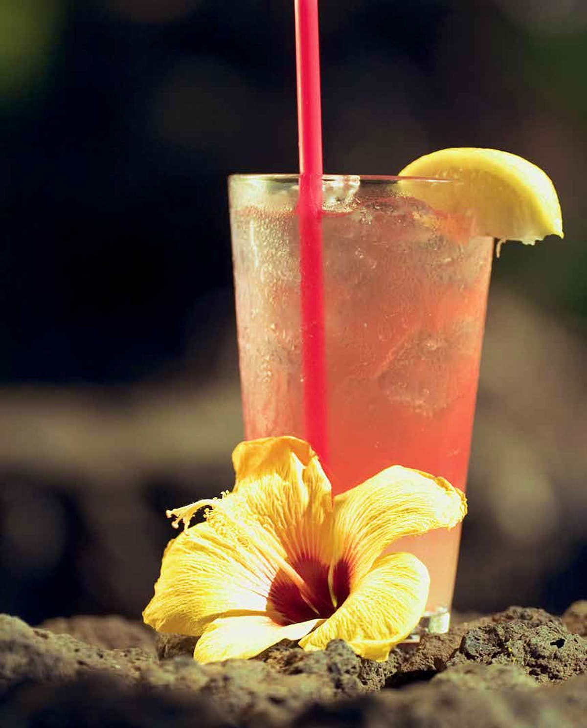 Destination Drinks #4 Hibiscus Ginger Punch - Lonely Planet
