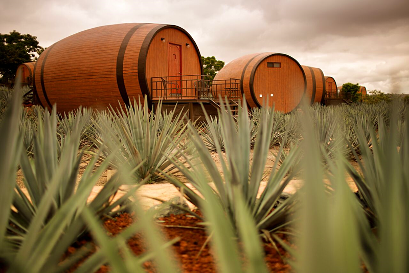 Go to Mexico and sleep in tequila barrels beside a tequila factory