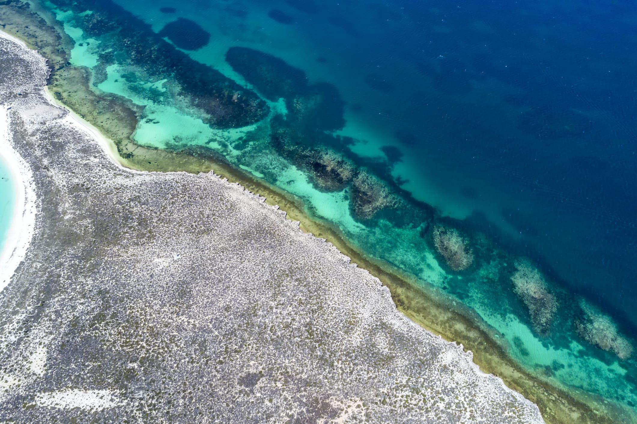 Las islas Houtman Abrolhos son un sitio impresionante de biodiversidad
