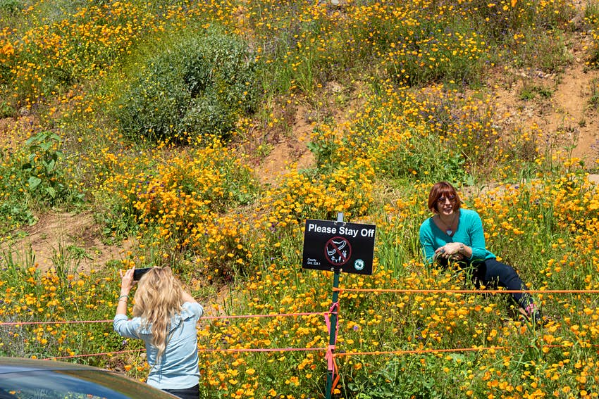 A woman lays on a flower-covered hill as another woman takes a photo. There's a sign that says 'please stay off' in front of the woman.