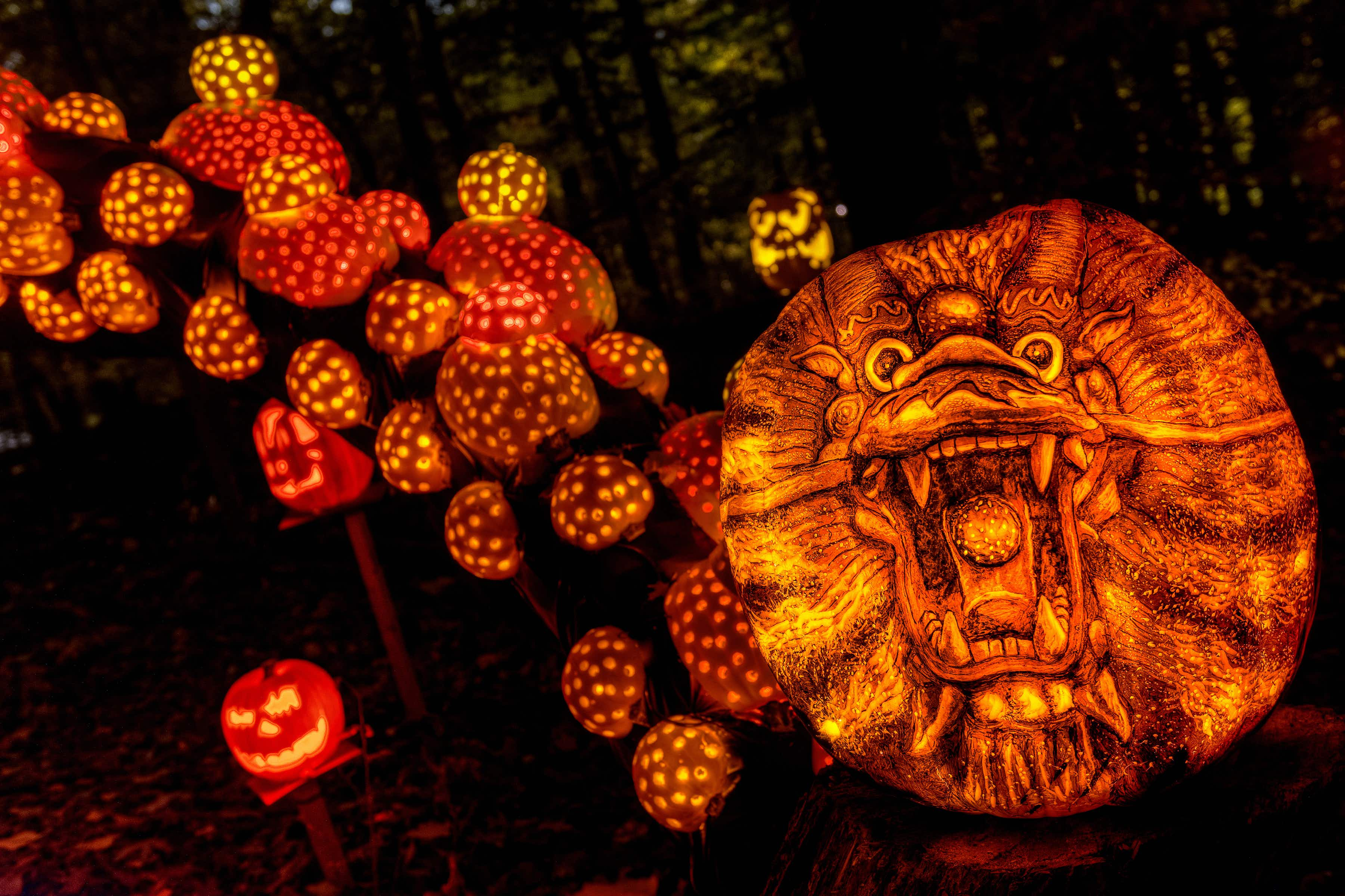 Watch pumpkins become true works of art at the Jack O'Latern Spectacular © Courtesy of Jack O' Lantern Spectacular