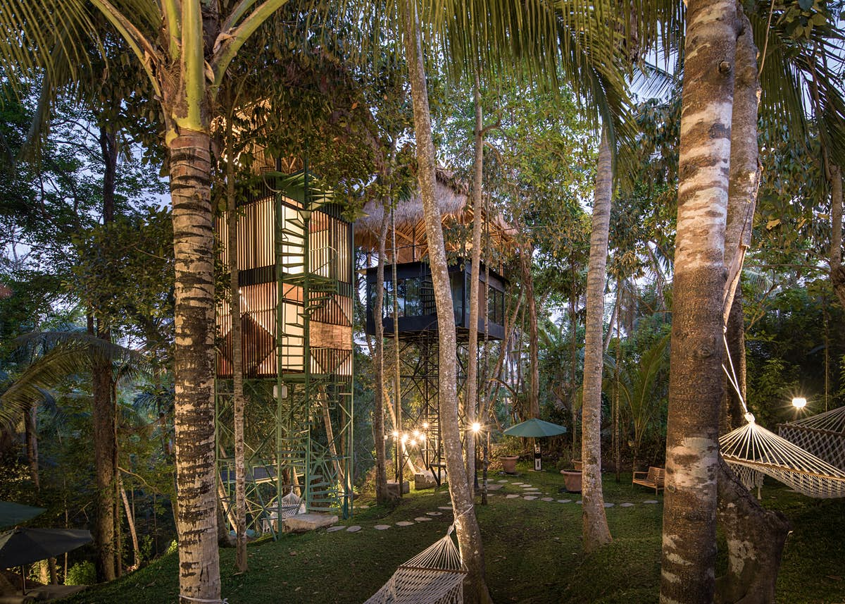 Branch out in style at Bali's new treetop hotel