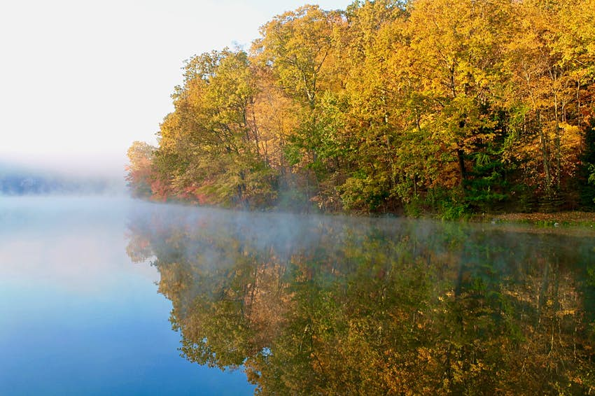 Trees with fall foliage border a lake with fog