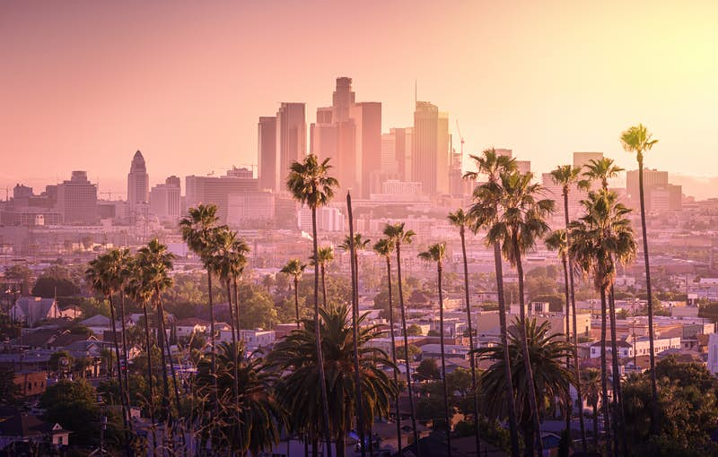 A line of palm trees sit at the foreground of a photo of the LA skyline during dusk; LA vs. South Bend