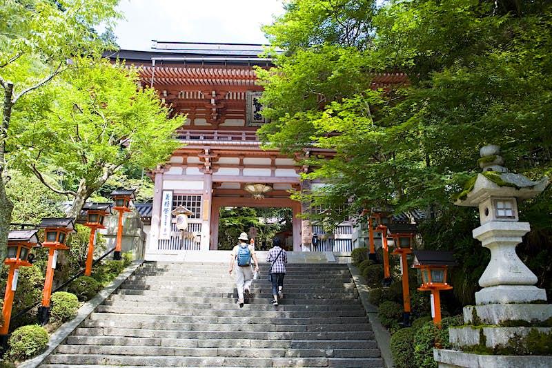 Hai người đi bộ bước lên trước các tòa nhà với những cái cây và đèn lồng nối các bậc thang
