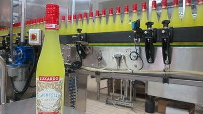 Visit the home of Limoncello: inside Italy's Luxardo distillery