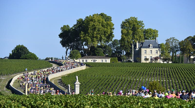 Thousands of colourfully dressed runners in the Marathon du Médoc work their way along a curving downhill section of walled road that cuts between rows of vines.