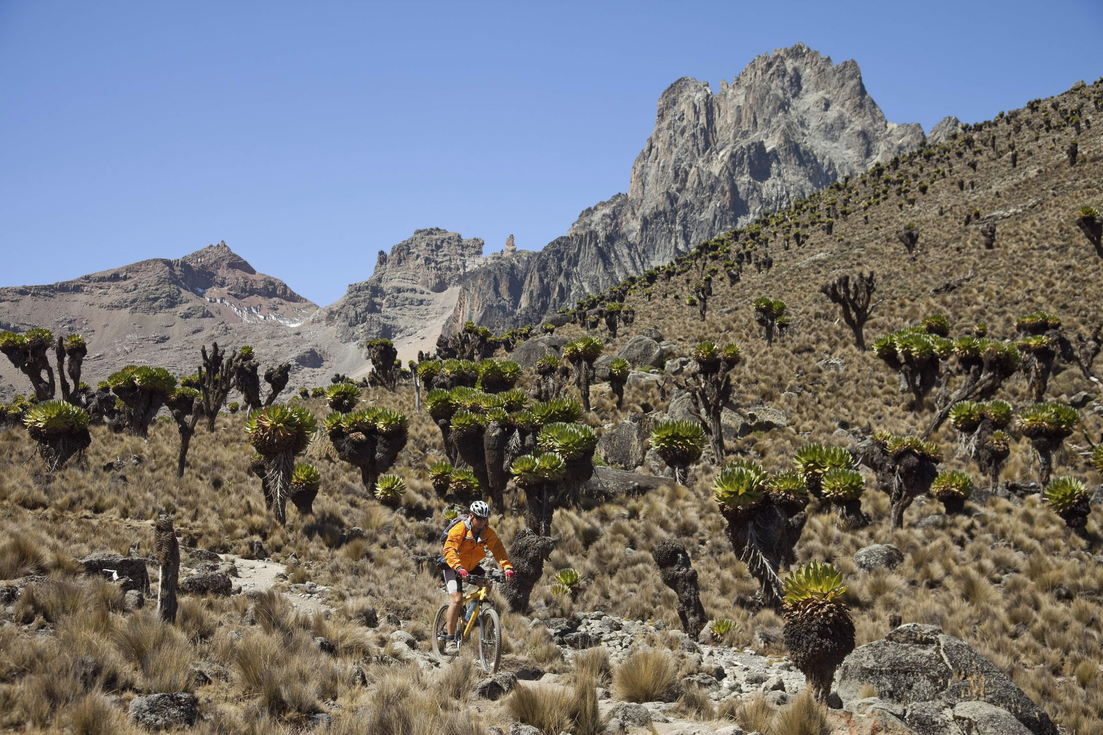 The slopes of Mt Kenya offer challenging trails to mountain bikers © Alexander Fortelny / Getty Images