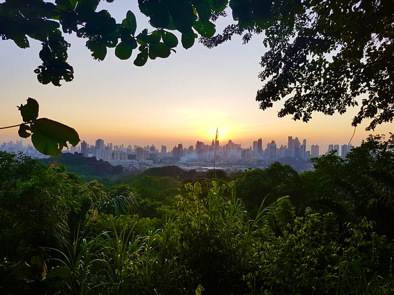 From tropical forests to rooftop bars: how to spend a perfect weekend in Panama City