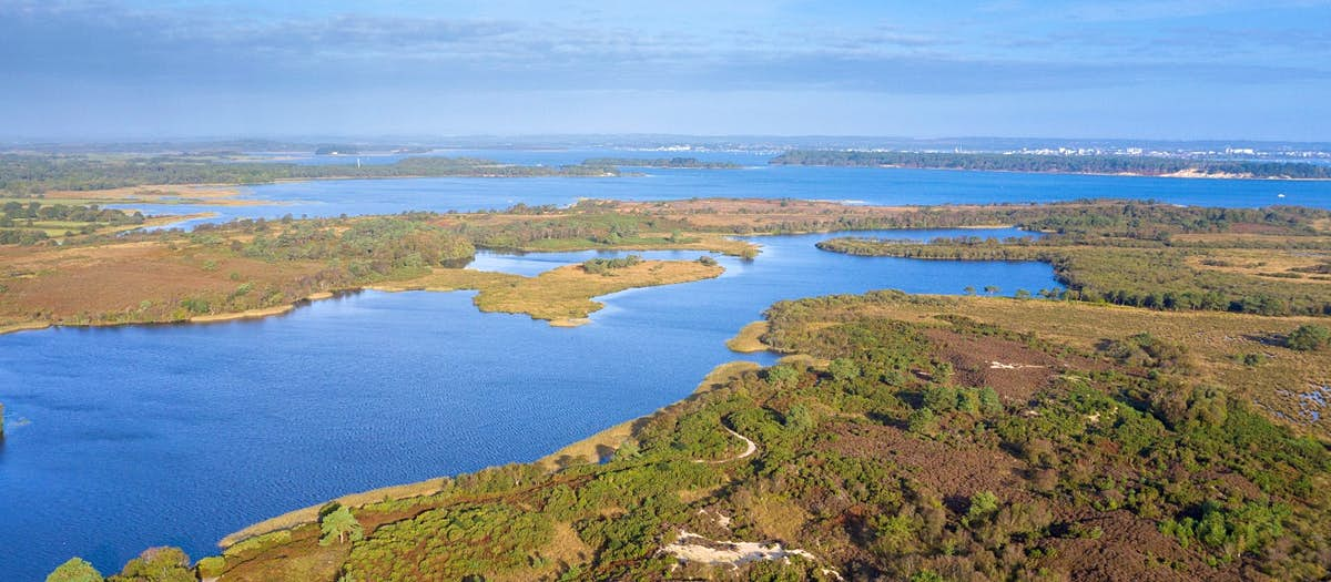 UK now has first 'super' National Nature Reserve - Lonely Planet
