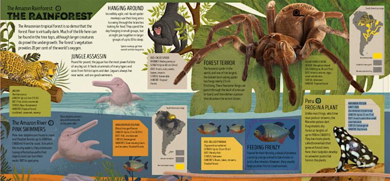 Animal Atlas sample page.png