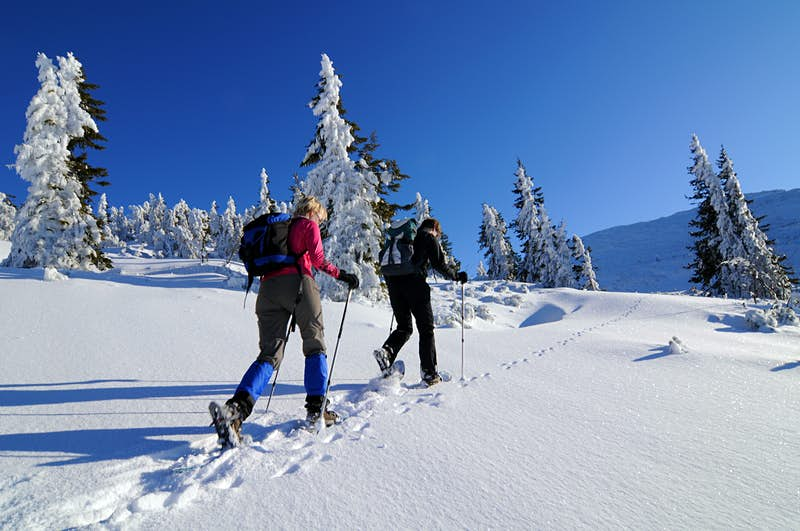 A pair of people carrying a poles snowshoe up a snow-covered hill