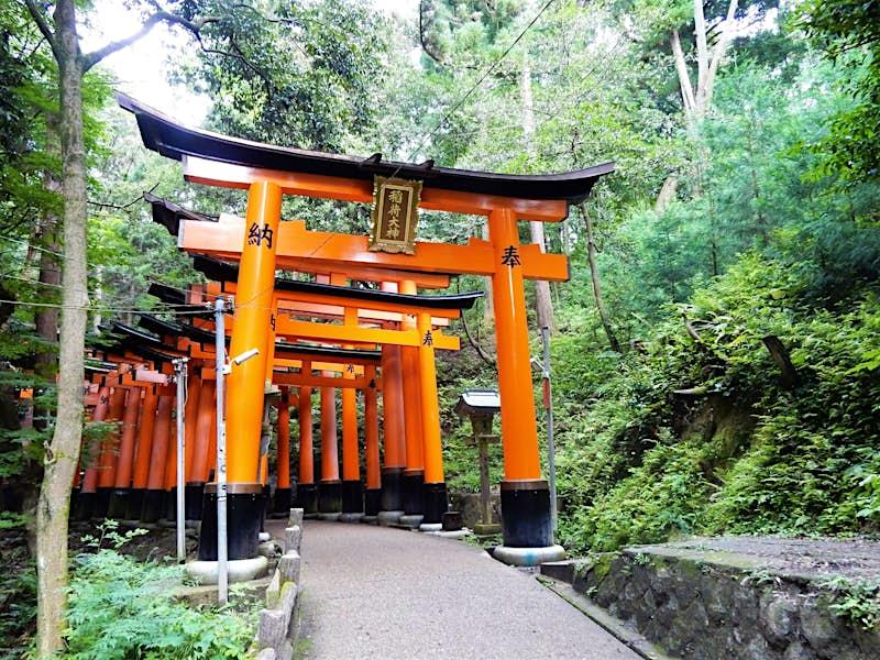Một loạt các cổng vòm hoặc cổng màu đỏ (toriis) tạo thành một đường hầm