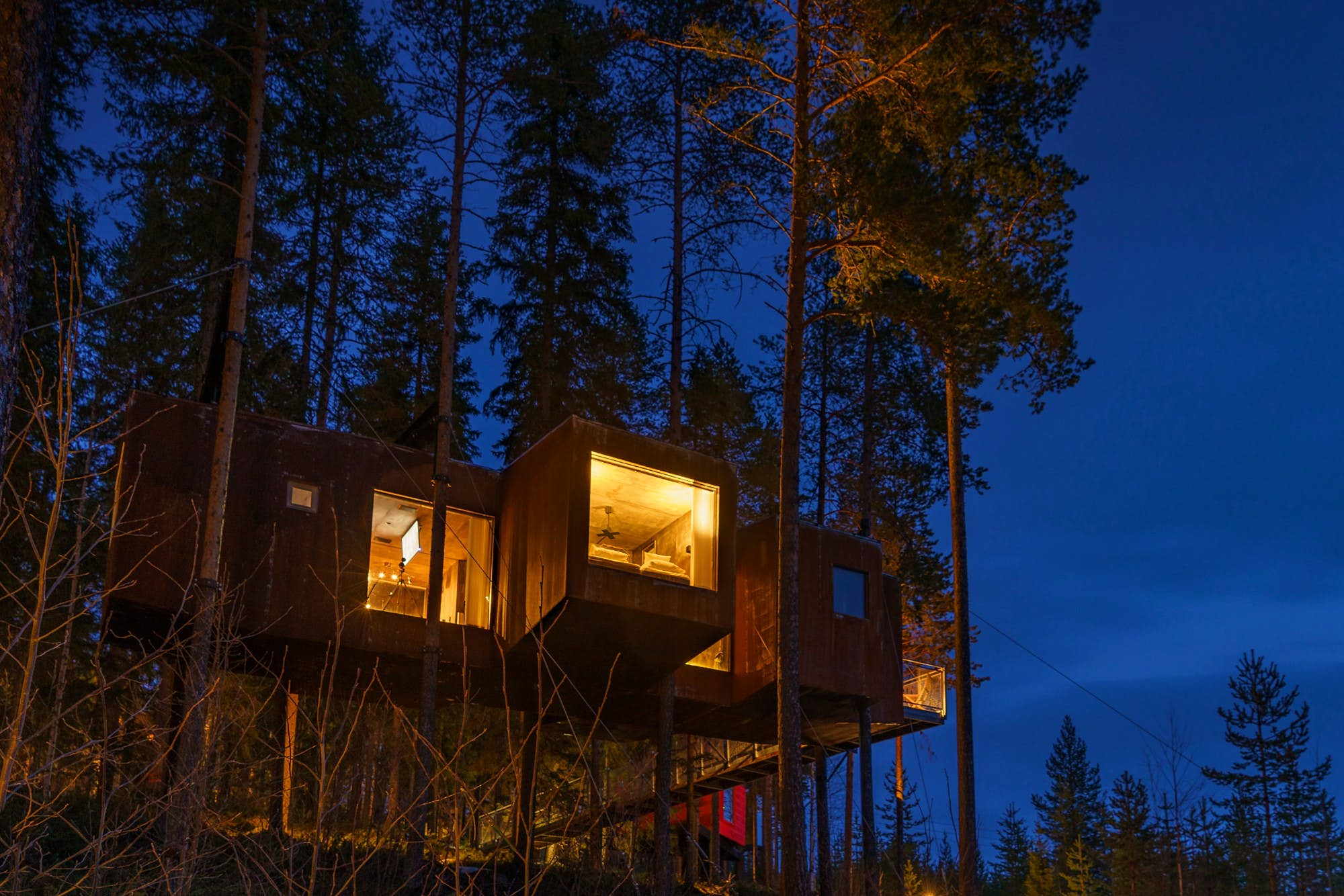 Spend seven nights in seven cool Swedish treehouses