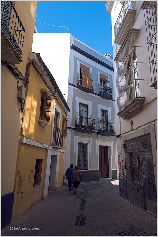 Campaigners bid to save Velazquez's birthplace in Seville