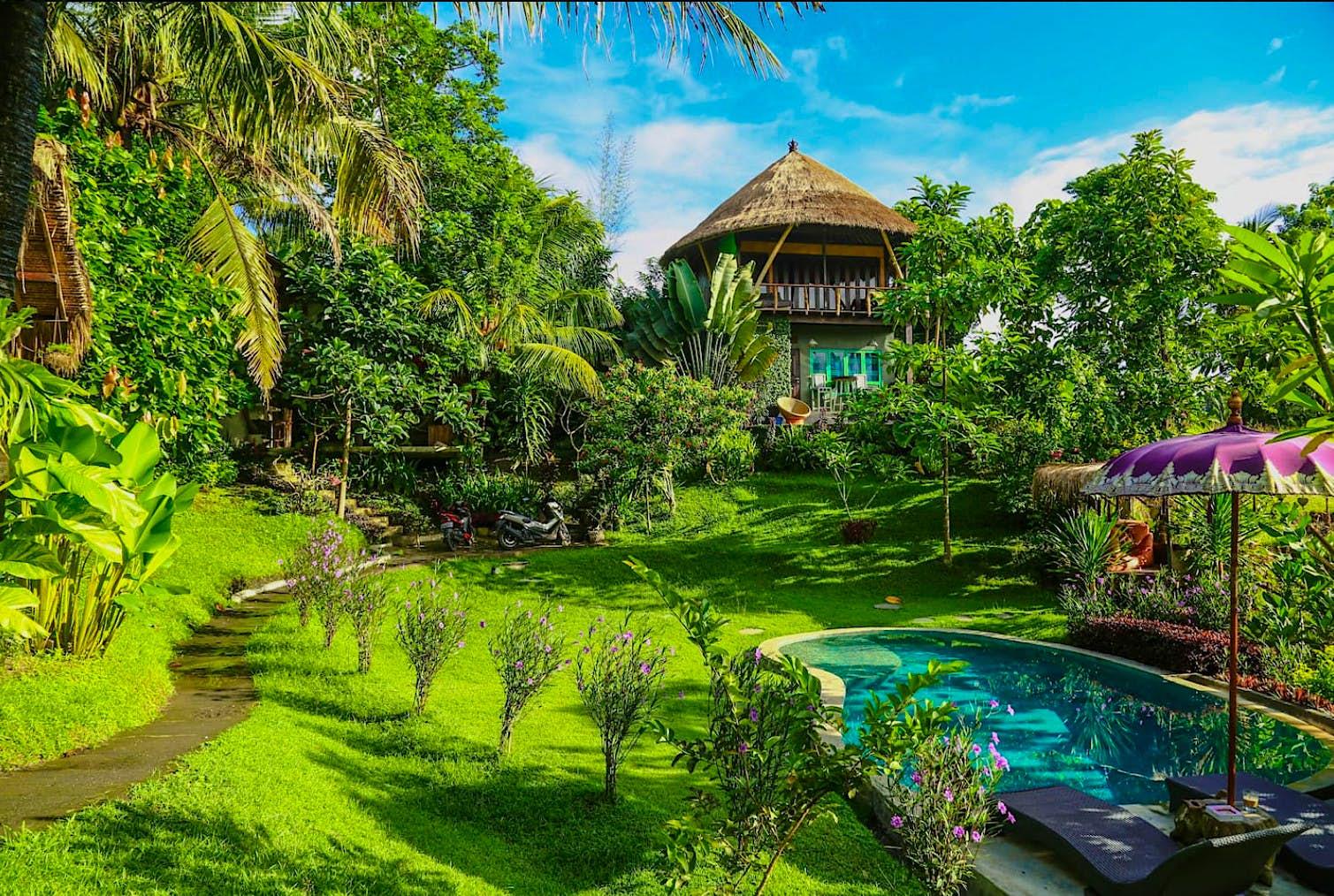 Uma foto da casa da árvore em Bali entre a selva