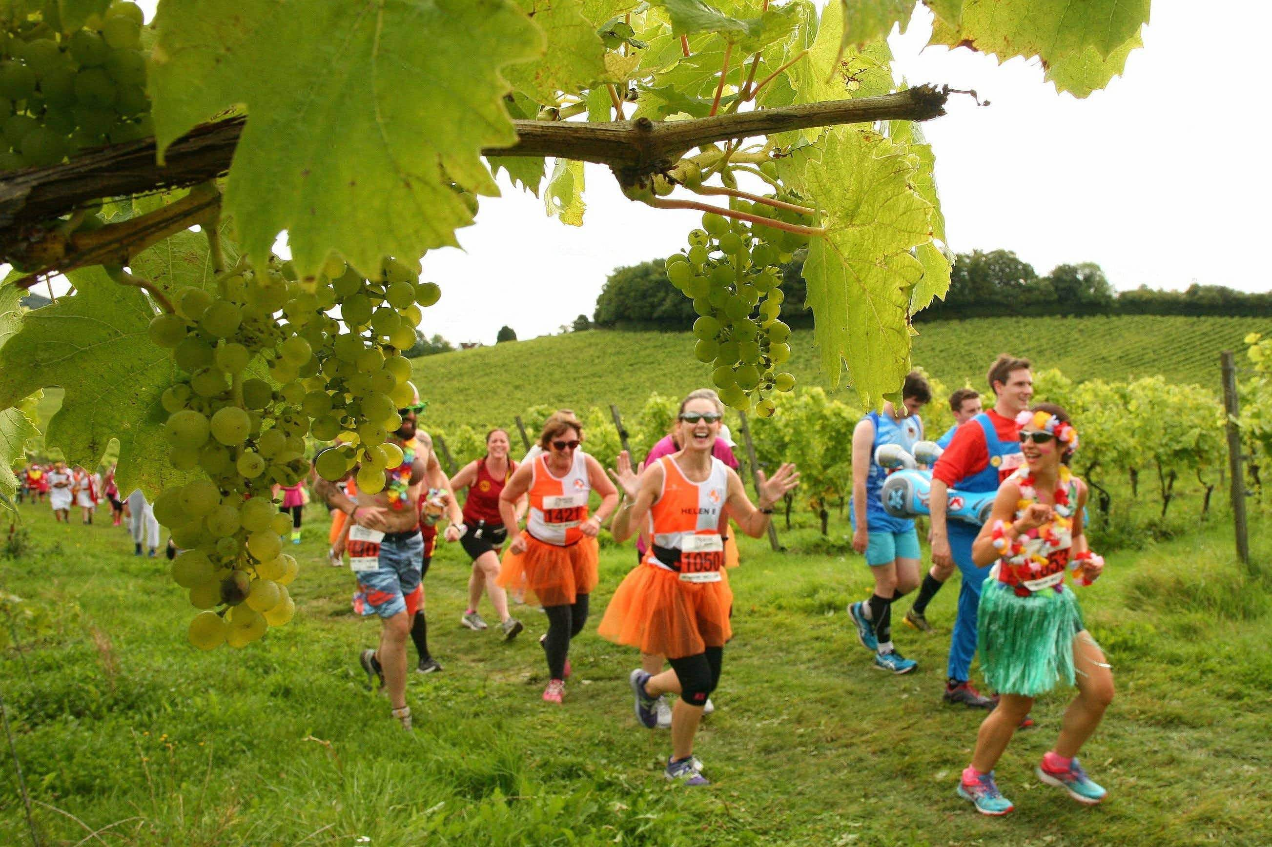 Pace yourself in the world's booziest races