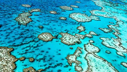 Where (not) to go in 2100: sites under threat from climate change