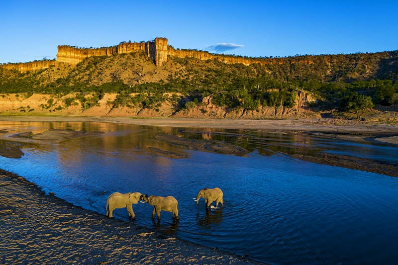 Three elephants cavort in the shallows of the Runde River, with the Chilojo Cliffs in the background.