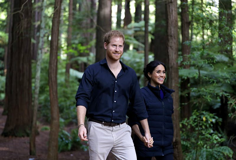 Harry and Meghan walking in a forest