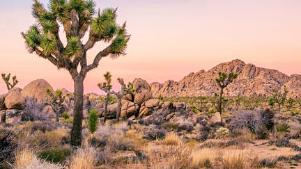 Explore Western USA with Lonely Planet Experiences