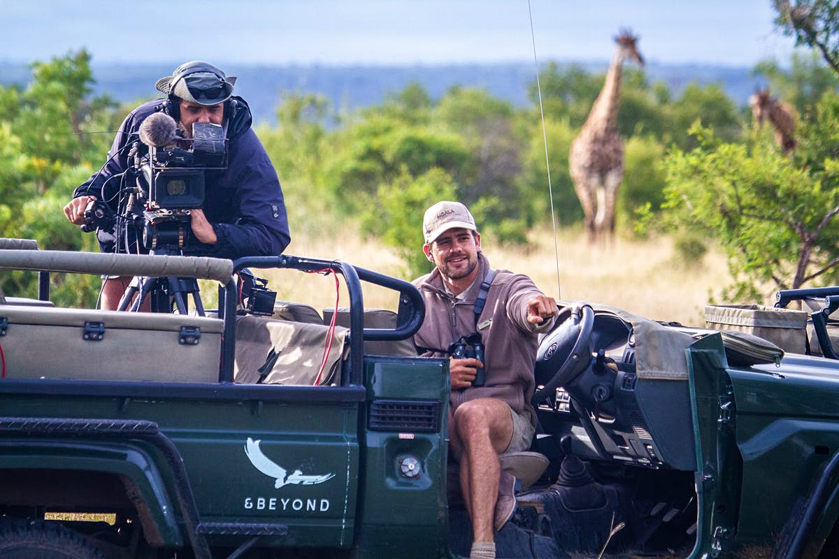 Join wildlife safari drives via live streaming