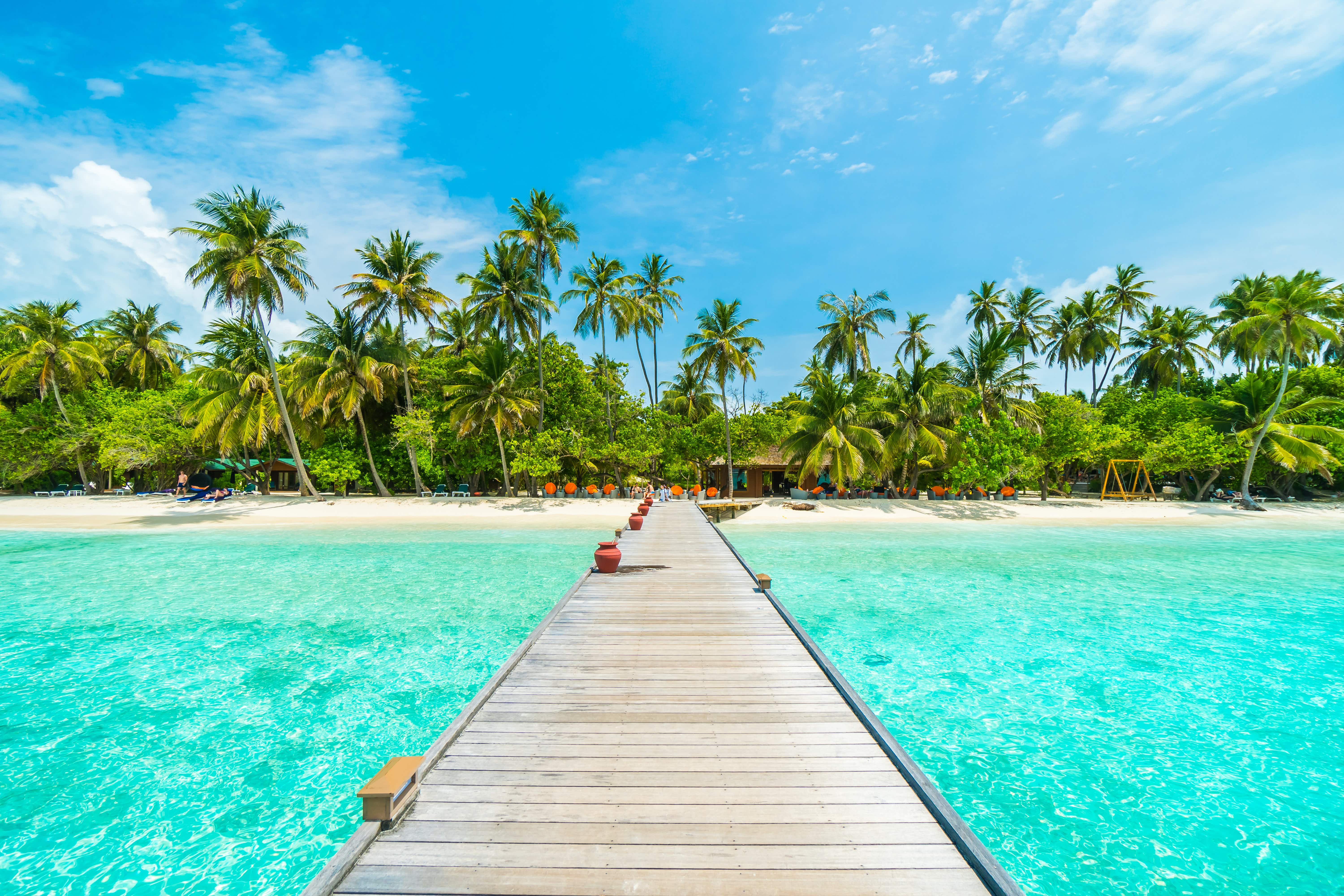 Although remote, the Maldives have proven popular in Google searches in 2019 © Food Travel Stockforlife / Shutterstock