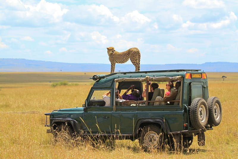 Where you should go on your first safari in Africa