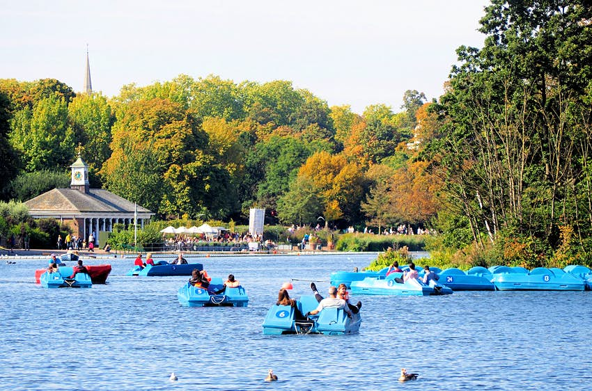 Five blue pedal boats are out on a lake on a summer's day. In the distance, tables are full of diners outside a cafe.