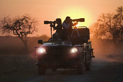 South African safaris for first-timers: 8 tips for the perfect trip