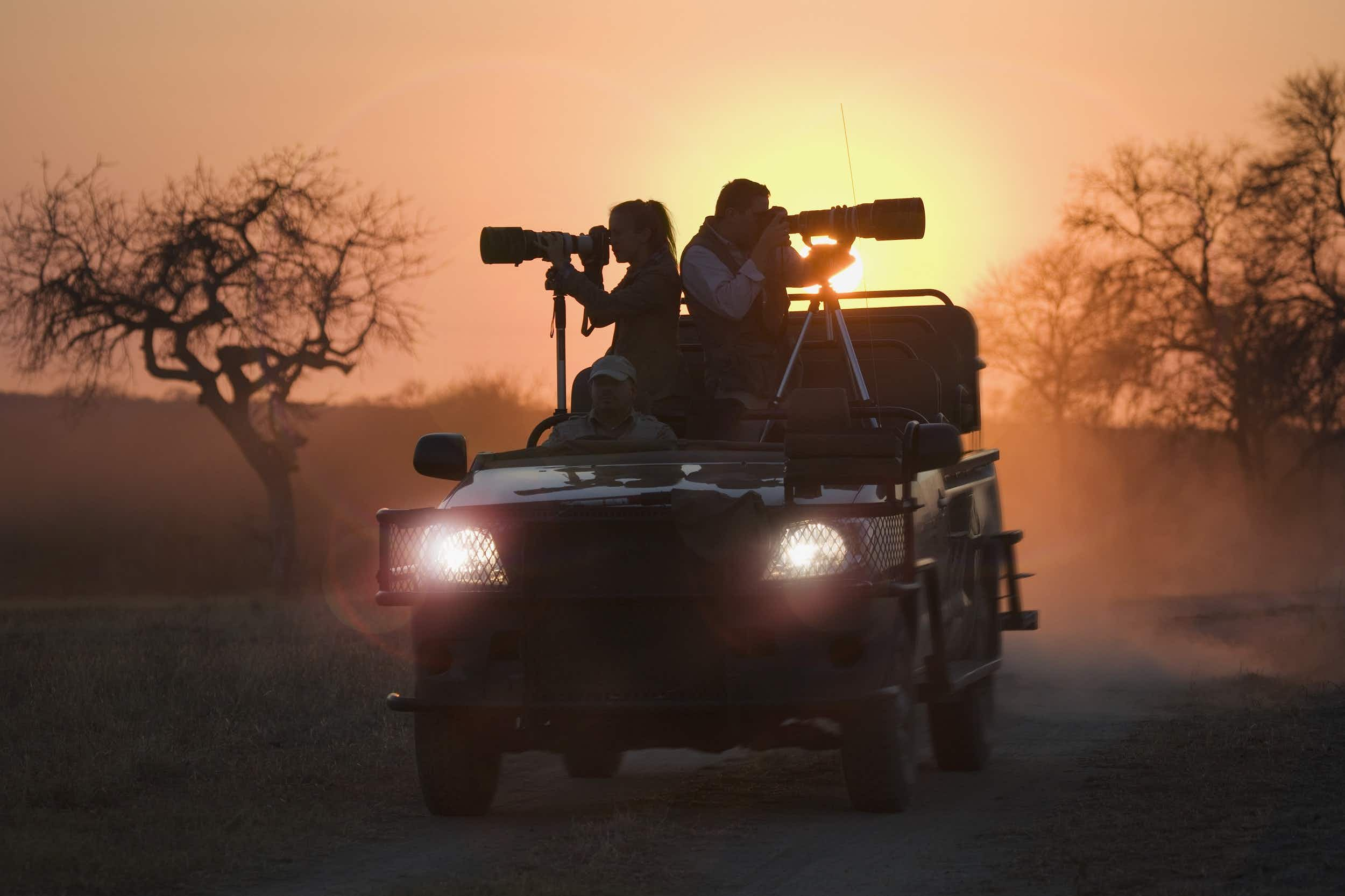 Image result for The Secret To Find Perfect African Dream Safari