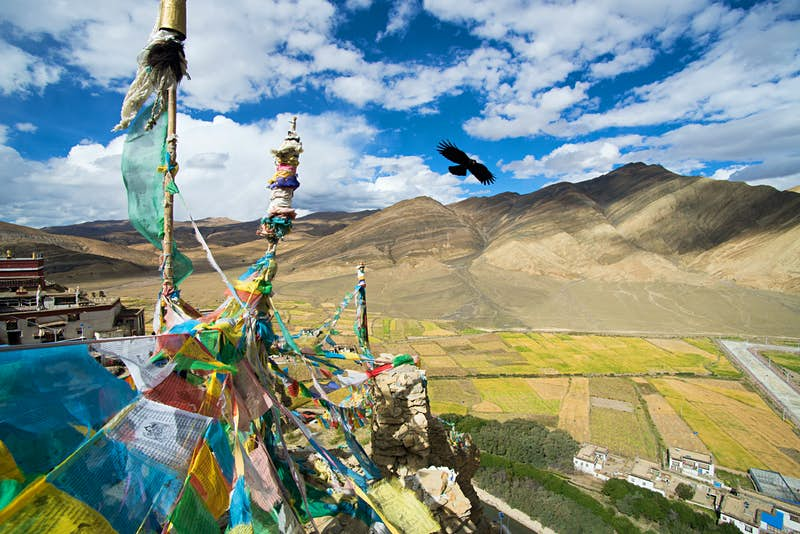 A view from above the monastery. Tibetan prayer flags adorn the top while a bird flies next to them. Mountains are in the background.