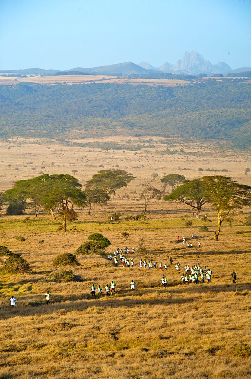 A line of runners snakes its way between acacia trees on the grassy Laikipia Plateau, with the rocky summit of Mt Kenya in the distance.