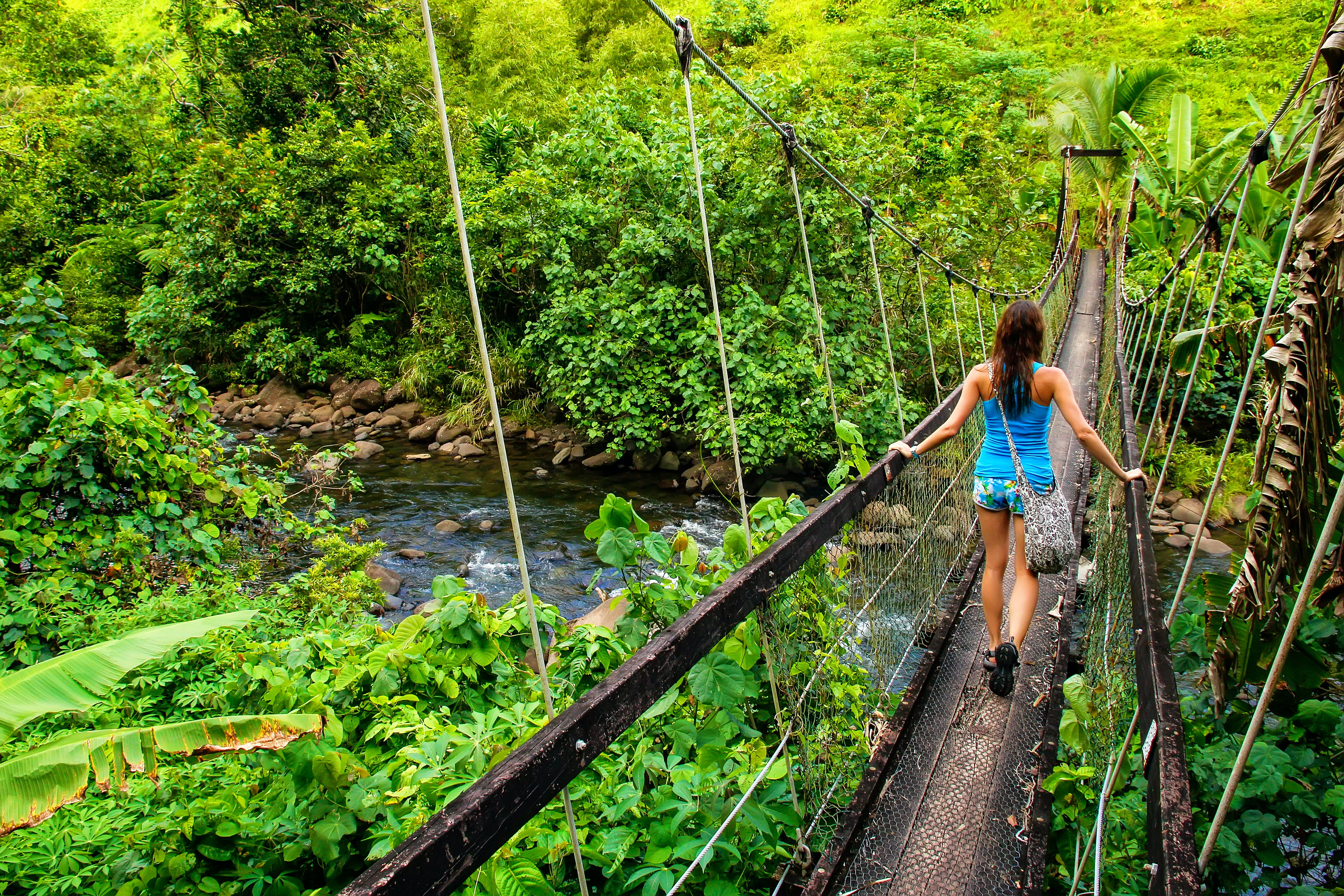 A woman is walking away from the camera, across a rickety bridge in a rainforest. A river runs over a rocky riverbed below.
