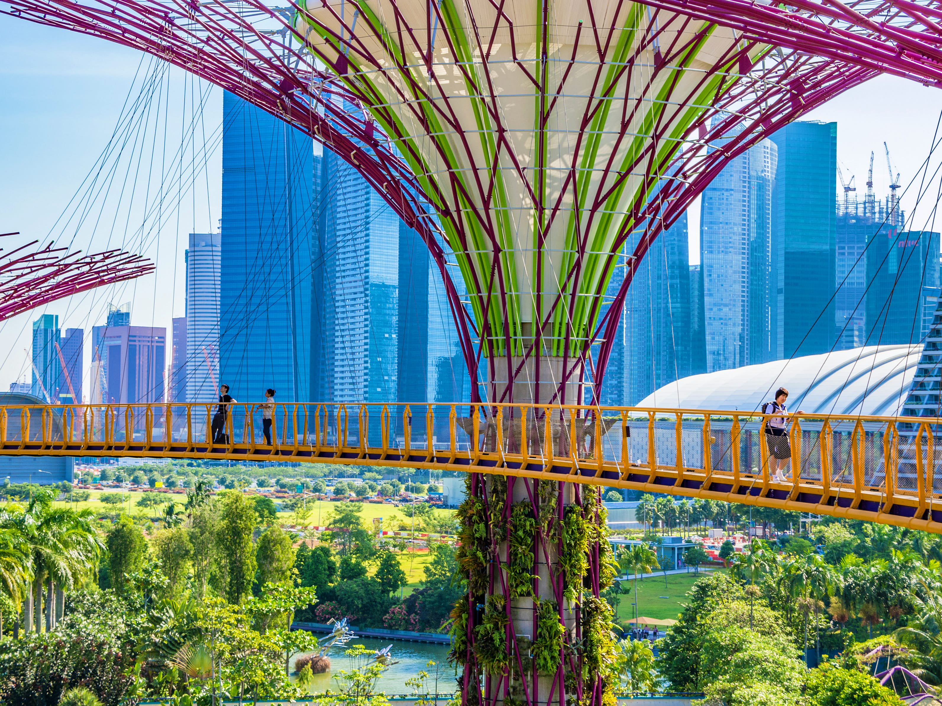 People walk along one of the hanging bridges that forms part of Singapore's futuristic Gardens by the Bay. In the background a number of glass skyscrapers are visible.