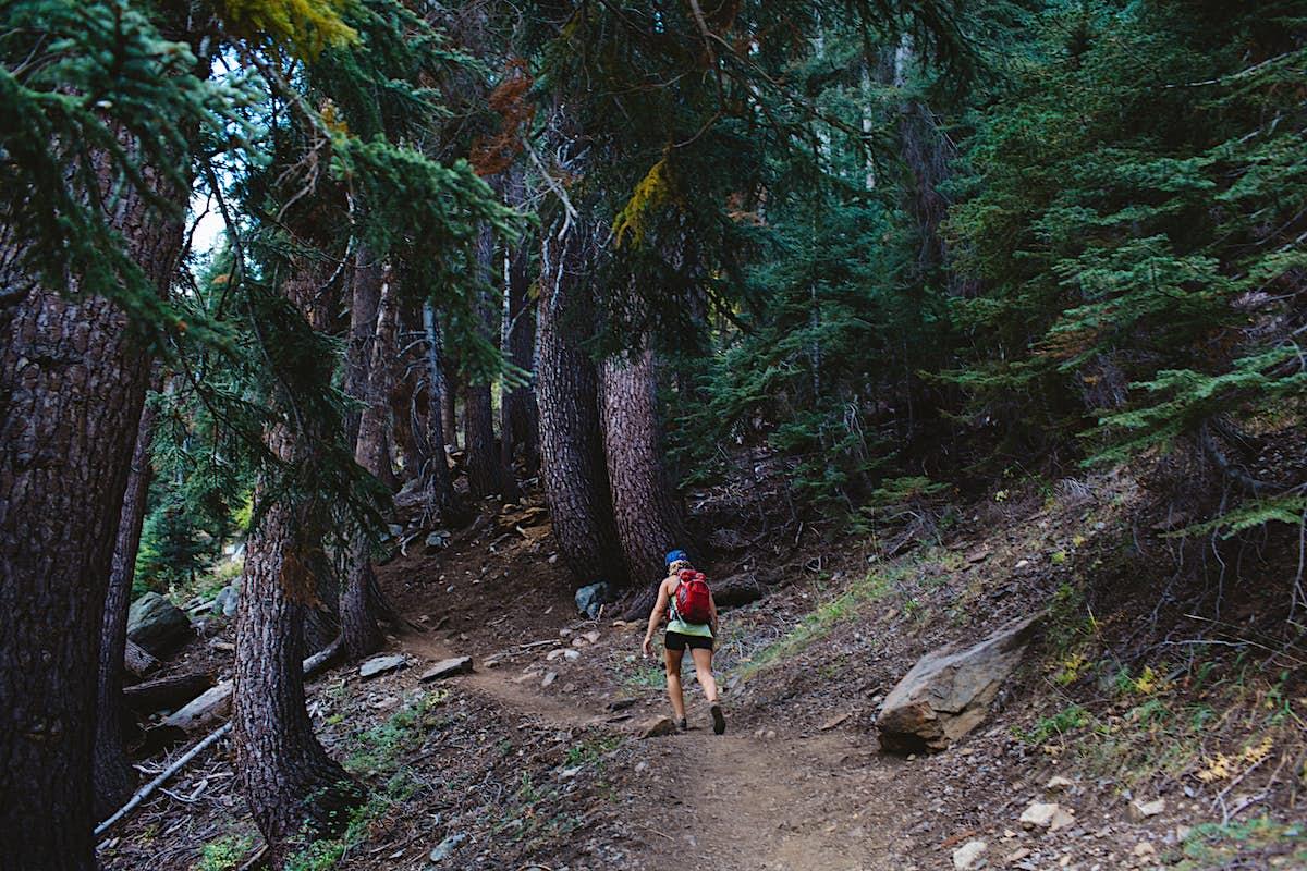 10 secret spots in popular US national parks - Lonely Planet