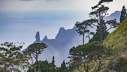 St Helena: a storied history told through the world's most remote distillery